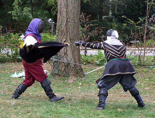 fencing at Agincourt 2007
