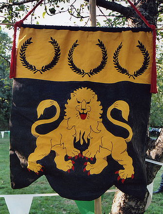 lions end banner