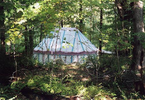 pavilion in woods Barleycorn 2006